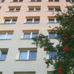 apartment_block_183883