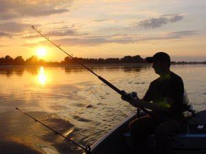 Незаконен риболов, Адвокат в Пловдив и София